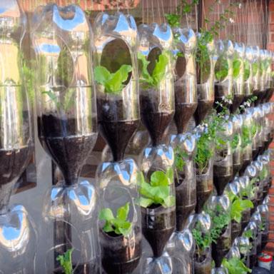 Huerta con botellas de plastico