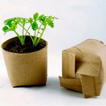 Semilleros con los rollos de cartón del papel higienico