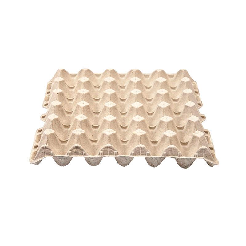 Carton de huevos como semillero