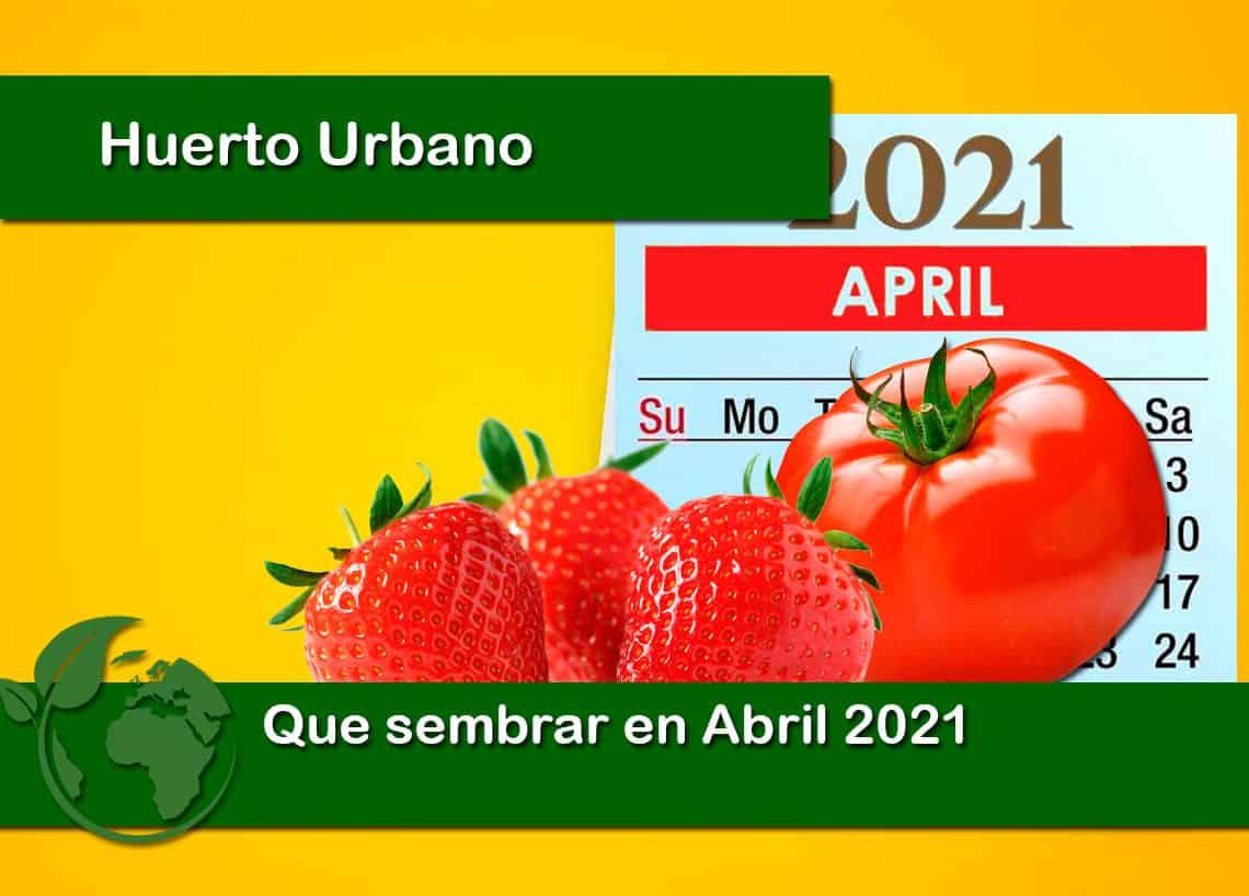Que sembrar en Abril 2021