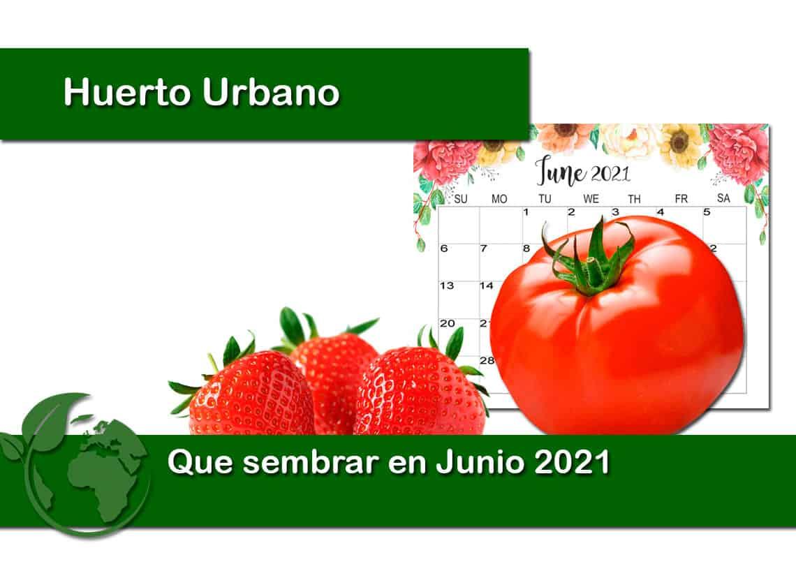 Que sembrar en Junio 2021