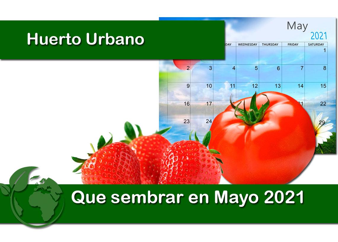 Que sembrar en Mayo 2021