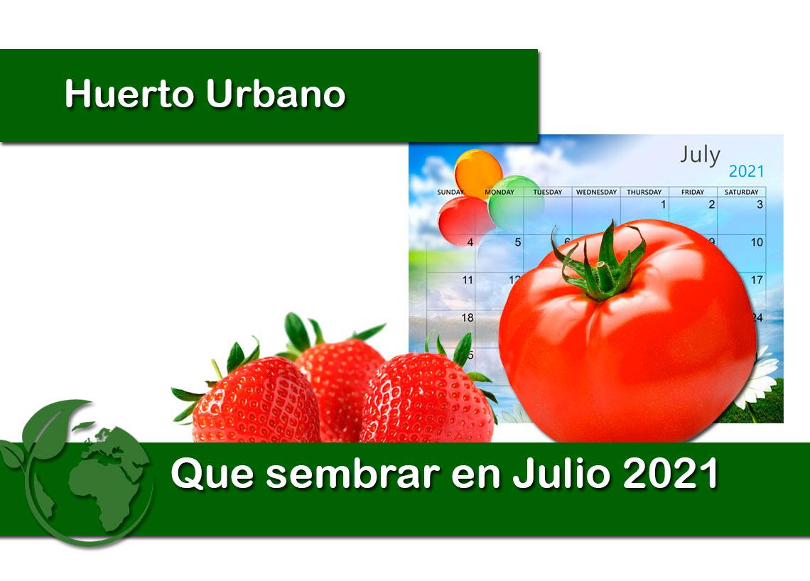 Que sembrar en Julio 2021